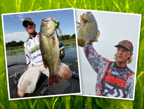 Webinar: Locating Bass in the Submerged Grass
